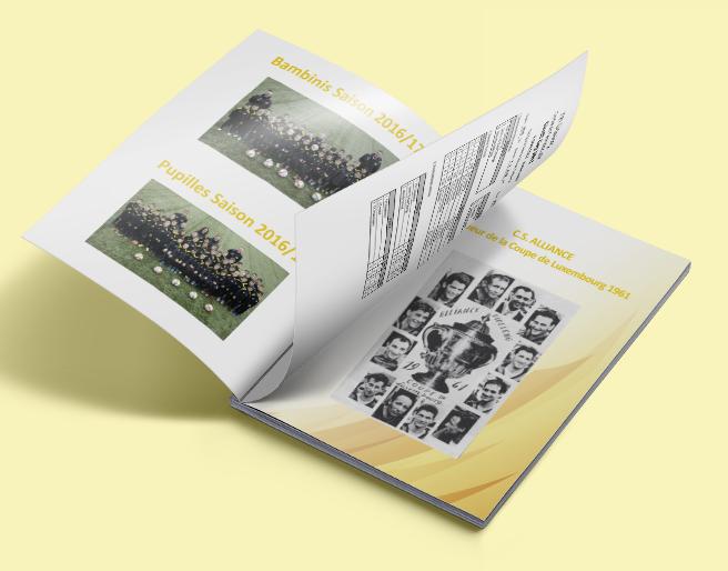 Brochure - F91